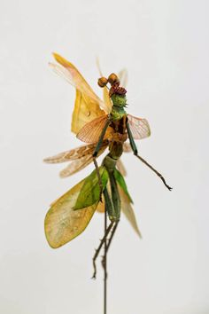 Amsterdam-based artist Cedric Laquieze has created a series of tiny sculptures that look like fantastic animals from another realm. He calls his creations 'Fairies' and they do look like pixies from a fantasy tale in which humans and insects have merged into a new race.
