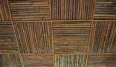 bamboo ceiling - Google Search