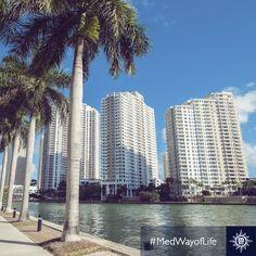 Het prachtige Miami, bekend om zijn lange stranden en glamour. #MSCDivina #USA #Miami