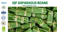 FROZEN ASPARAGUS BEANS IQF ASPARAGUS BEANS FROZEN COWPEAS  IQF COWPEAS  FROZEN ASPARAGUS BEANS SUPPLIER CHINA IQF ASPARAGUS BEANS SUPPLIER CHINA FROZEN COWPEAS SUPPLIER CHINA IQF COWPEAS SUPPLIER CHINA FROZEN VEGETABLES SUPPLIER CHINA FROZEN FRUITS SUPPLIER CHINA  MORE INFO: cwl@sinofrost.com.cn Asparagus Beans, Frozen Seafood, Frozen Vegetables, Frozen Fruit, Food Safety, Best Relationship, Berries, Stuffed Mushrooms, China