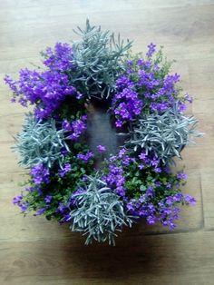 Lavander and campanula. Lavander, Floral Wreath, Wreaths, Spring, Flowers, Plants, Decor, Floral Crown, Decoration