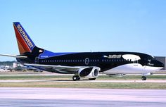 "In 2009, Southwest Airlines celebrated the opening of the new Manta Ride at SeaWorld, and as the official airline of the aquatic amusement park, they flew in with ""Shamu One,"" one of their 737s painted up with the whale livery."