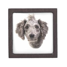 Shop grey punk poodle gift box created by tuneoperator. Animal Skulls, Made Of Wood, White Shop, Keepsake Boxes, Diy Face Mask, Poodle, Pink And Green, Kids Shop, Punk
