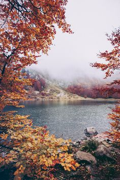 Oh autumn • Lakes and Leaves #REVISITProducts #autumn