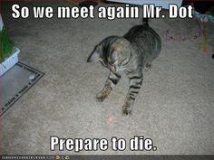 Mr. Dot