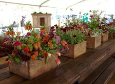 These salvaged wood crates make beautiful displays!