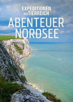 Expeditionen ins Tierreich: Abenteuer Nordsee - Join the seasoned naturalists and film crew from the long-running documentary series as they explore the wildlife wonders of the North Sea.