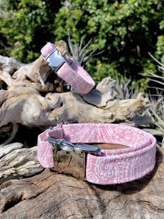 Our new dog collar is now available on our Etsy shop!😍 Check our now! Handmade Dog Collars, Cat Collars, Luxury Dog Collars, Dog Bows, Therapy Dogs, Buy A Cat, Pink Candy, New Puppy, Dog Accessories