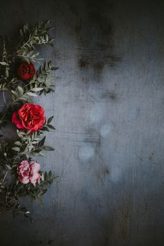 Floral wallpaper photo by Annie Spratt ( on Unsplash Free Background Images, Flower Background Wallpaper, Flower Phone Wallpaper, Rose Wallpaper, Cellphone Wallpaper, Flower Backgrounds, Colorful Wallpaper, Screen Wallpaper, Mobile Wallpaper