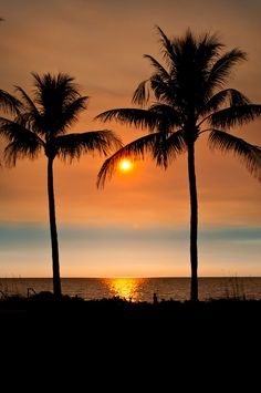 Beach at Lowdermilk Park in Naples Naples Florida beach sunset with palm trees. Photo by Jennifer Brinkman. Must Do Visitor Guides, Naples Florida beach sunset with palm trees. Photo by Jennifer Brinkman. Must Do Visitor Guides, Naples Florida, Naples Beach, Types Of Photography, Beach Photography, Landscape Photography, Levitation Photography, Exposure Photography, Florida Vacation, Florida Beaches