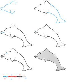 @Brandi Southern because i know you like to draw dolphins all the time (:
