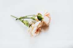 Wedding rings and flowers   A Tale of two Hearts