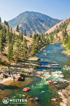A 5 or 6 day rafting trip down the Middle Fork of the Salmon will treat you to over 100 whitewater rafting rapids! Western River Expeditions has it all planned for you... #Idaho #whitewater #rafting