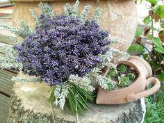 - Feng Shui, Floral Wreath, Wreaths, Flowers, Home Decor, Garden Plants, Lavender, Nice Asses, Flower Crowns