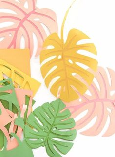 Autumn leaves are coming but I& still holding on to summer. Combine both seasons with these DIY Paper Monstera Leaves made with a Cricut Explore Diy Flowers, Paper Flowers, Photo Deco, Deco Nature, Art Nature, Paper Plants, Paper Leaves, Diy Papier, Tropical Party