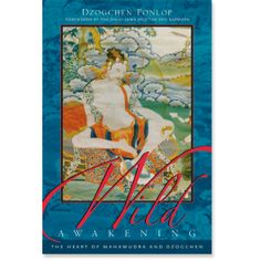 Wild Awakening: The Heart of Mahamudra and Dzogchen: 9781590300961: Dzogchen Ponlop Rinpoche: Books: Shambhala Publications