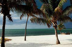 Islamorada, Florida Keys ~ Wish I were here! State Of Florida, Florida Keys, South Florida, Most Beautiful Beaches, World's Most Beautiful, Beautiful Places, Places Of Interest, Island Life, Best Vacations
