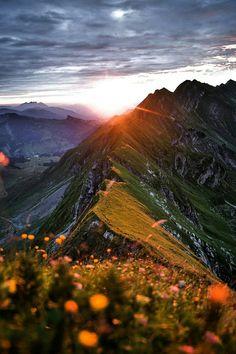 Lo más hermoso de la vida es la naturaleza