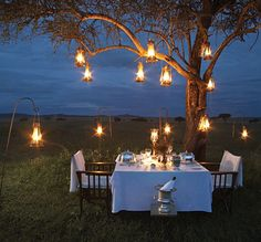 Hanging lanterns in trees creates a romantic vintage ambiance for an outdoor dinner party. Romantic Dinners, Romantic Night, Romantic Table, Romantic Ideas, Romantic Surprise, Romantic Honeymoon, Romantic Things, Romantic Dates, Elegant Table