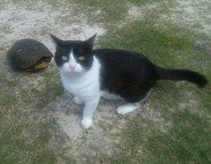 Thomas and his visitor.