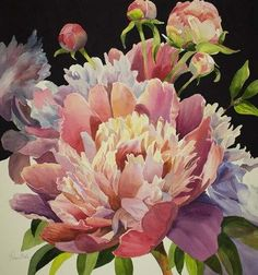 Framed Pink Peony Print Flower Images, Flower Art, Peony Print, Pink Peonies, Custom Framing, New Art, Framed Art, Beautiful Flowers, Florals