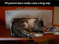 3D Printers Have Really Come A Long Way.,  Click the link to view today's funniest pictures!
