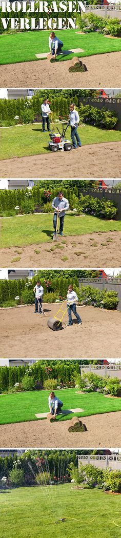 Ein sattgrüner Rasen gehört zum Garten einfach dazu: Doch statt auf das langsame Keimen der Rasensaat zu warten, können Sie das Grün auch einfach ausrollen. Wir zeigen Ihnen Schritt für Schritt, wie man selbst Rollrasen verlegen kann.