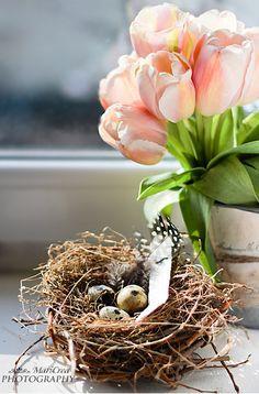 spring bird nest with flower arrangement Spring Birds, Spring Flowers, Pastel Flowers, Pink Tulips, Spring Has Sprung, Hello Spring, Grapevine Wreath, Happy Easter, Spring Time
