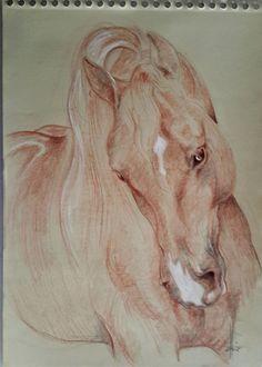 Dibujo de caballo a sanguina