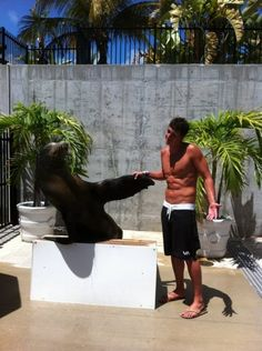 Your argument is irrelevant, here's Ryan Lochte with a seal