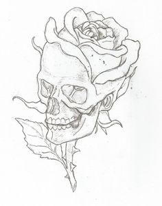 Skull And Rose Drawing Step By Step