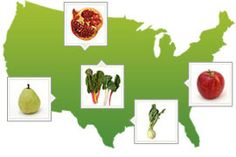 "Interactive Ingredient Map  ""Our seasonal ingredient map shows you what's available in your area every month."""