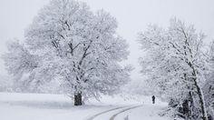 Noite da consoada e dia de Natal com frio, chuva e neve
