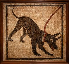 Dogs were highly valued in ancient Rome, as they were in other cultures, and the Roman dog served many of the same purposes as it did in, say, Egypt and Persia, but with a significant difference in focus. Like the Egyptians, the Romans created their own artistic dog collars – some of gold – and, although dogs did not feature in the Roman afterlife (as they did with the Persians), they were considered the best protection against ghosts or evil spirits. The central difference between the Roman…
