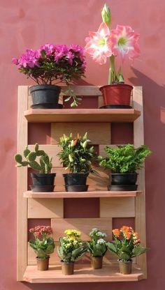 forma de estante (de madeira ou ferro), com prateleiras vazadas e inclinadas até cerca de 30 graus.