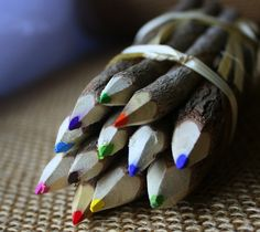 Branch And Twig Assorted Colored Pencils – $8