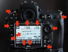 Do you want to learn more about your camera?  Here to get this free ebook with great tips and information for you.  Click on the photo for the ebook.