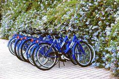 Folyamatosan fogyni fogsz ettől a Kili, Google News, Bicycle, World, Bicycles, Cities, Traveling, Argentina, People