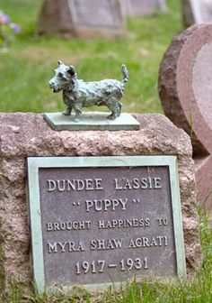 Bronze terrier and memorial plate for Dundee Lassie (1912-1931) at Hartsdale Pet Cemetery.