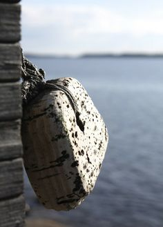 www.kotilablogi.blogspot.fi Archipelago, Vincent Van Gogh, Summer Of Love, Nautical, Old Things, Rustic, Sea, Stone, Lifestyle