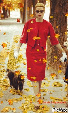 "gracepatri: "" Autumn leaves falling! """