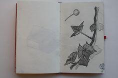 Study of a branch. Oscar van Leest.