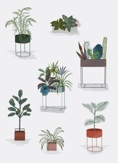 Instructions from ferm LIVING on plants in your home # Instructions Collage Architecture, Architecture Graphics, Architecture Design, Interior Rendering, Interior Sketch, Interior Plants, Plant Illustration, Design Furniture, Flowers