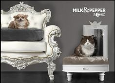milk and pepper beds