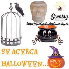 Nuestros #calentadores #scentsy especiales de la temporada #cosecha2015, para celebrar Halloween sin que os falte detalle. Contacta por mail quebienhuelealv@gmail.com.
