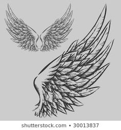 Find Wings Hand Drawn Vector Illustration stock images in HD and millions of other royalty-free stock photos, illustrations and vectors in the Shutterstock collection. Tatuagem Pin Up, Eagle Wing Tattoos, Angel Wings Drawing, Tattoo Bauch, Wings Sketch, Hand Tattoo, Tattoo Wings, Tattoo Neck, Tattoo Forearm