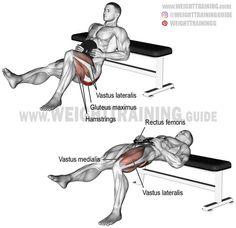 Weighted one-leg hip thrust. A unilateral isolation exercise. Target muscle: Gluteus Maximus. Synergists: Quadriceps (Vastus Lateralis, Vastus Medialis, Vastus Intermedius, and Rectus Femoris). Dynamic stabilizers: Hamstrings (Biceps Femoris, Semimembranosus, and Semitendinosus).
