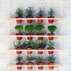DIY Hanging Wooden Shelf Vertical Garden