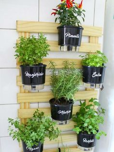Stunning Apartment Garden Indoor Ideas - You don't need to forfeit your affection for gardening since you're experiencing your huge city dreams-or perhaps you're an all out gardening beginner. Balcony Hanging Planter, Balcony Garden, Herb Garden Indoor, Garden Plants, Indoor Gardening, Vintage Garden Decor, Diy Plant Stand, Plant Stands, Herbs Indoors