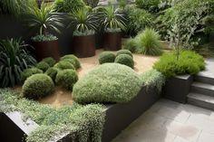 aménagement du jardin moderne: arbustes et palmiers